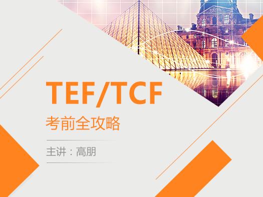 TEF/TCF考前辅导,题型训练,高朋,
